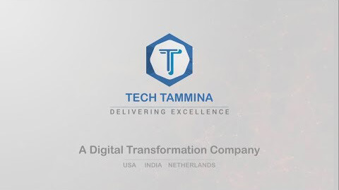 Tech Tammina LLC - Corporate Profile